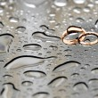 Two gold wedding rings coated raindrops — Stock Photo