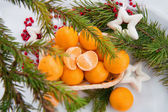 New year decoration with mandarins and fir tree — Stockfoto