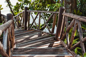 Wooden Stairway in the jungle — Stok fotoğraf