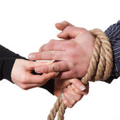 Close up of hands tied with rope — Stock Photo