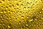 Bira damla — Stok fotoğraf