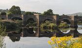 Clady bridge in Northern Ireland — Stock Photo