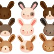 Collection of Cute rabbit — Stock Vector #28387243