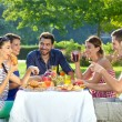 Friends enjoying a healthy outdoor meal — Stock Photo