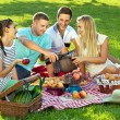 Friends enjoying a healthy picnic — Stock Photo #29776449