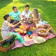 Friends having a picnic — Stock Photo