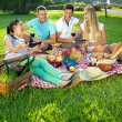 Two couples picnicking in a park — Stock Photo #29776461