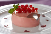Creamy vanilla pannacotta with red currant flavouring — Stock Photo
