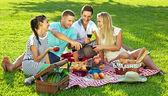Amigos disfrutar de un picnic saludable — Foto de Stock