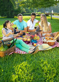 Two couples picnicking in a park — Stock Photo