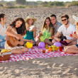 Stock Photo: Group of happy young people having picnic on beach