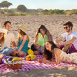 Stock Photo: Young party people having enjoyable picnic on beach
