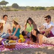 Young party people having enjoyable picnic on the beach — Stock Photo