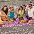 Stock Photo: Group of happy young people having a picnic on the beach