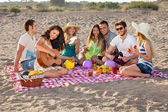 Group of happy young people having a picnic on the beach — Stock Photo