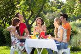 Wesoły ludzi na pikniku. — Zdjęcie stockowe