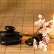 Black stones, candle and flower branch. — Stock Photo #32596721