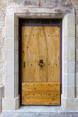 Old massive wooden door — Stock Photo