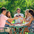 Friends drinking wine outdoors — Stock Photo