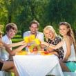 Friends having picnic at the park — Stok fotoğraf