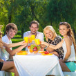 Friends having picnic at the park — Stock Photo #34525343
