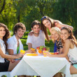 Young people enjoy a picnic at the park — Stock Photo