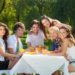 Stock Photo: Young people enjoy a picnic at the park