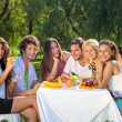 Young people having picnic at the park — Stock Photo #34525393