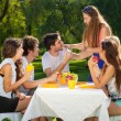 Friends having picnic at the park — Stock Photo #34525403