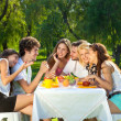 Stock Photo: People having picnic at the park