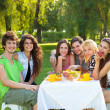 Friends enjoy a picnic at the park — Stock Photo #34525419