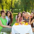 Stock Photo: Friends enjoy a picnic at the park