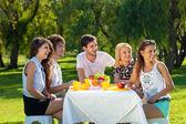 Friends enjoy a picnic at the park — Stockfoto