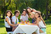 Young people enjoy a picnic at the park — Stockfoto