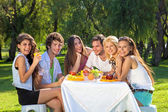 Young people having picnic at the park — Stockfoto