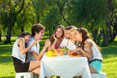 People having picnic at the park — Stockfoto