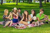 Друзья, на пикник, сидя на траве — Стоковое фото