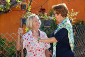 Two elderly ladies chatting in the garden.  — Stock Photo