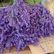 Bunches of lavender flowers — Stock Photo #44789051
