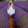 Woman in field of lavender — Stock Photo