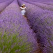 Woman in field of lavender — Stock Photo #44789295