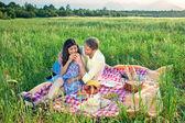 カップルを楽しむ夏のピクニック — ストック写真