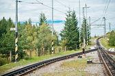 Single-track railway — Stock fotografie