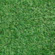 Стоковое фото: Artificial grass background