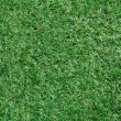 Artificial grass background — Photo #32413415