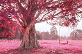 Swing on tree, pink imagine forest — Stock Photo