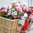 Flower on a bicycle — 图库照片