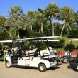 Foto Stock: Golf cart