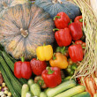 Stock Photo: Many kinds of vegetables