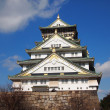 Osaka Palace ,Japan — Stock Photo